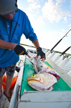 The Darwin Harbour Fishing Charters is designed to provide you with the one of a kind fishing experience that will be perfect for amateurs and professionals alike. #fishingcharterdarwin http://darwinharbourfishingcharters.com.au