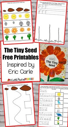 Flower Potato Stamping Craft and The Tiny Seed Free Printables - crafts crafts potter crafts glue gun crafts Seeds Preschool, Preschool Garden, Kindergarten Crafts, Free Preschool, Preschool Printables, Preschool Lessons, Preschool Activities, Free Printables, Book Activities