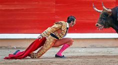 Bullfighter Juan Jose Padilla kneels down in front of a bull during the last bullfight of the San Fermin festival in Pamplona, Spain