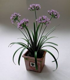 Dollhouse Minis: Dollhouse Plants by Bev Gallerani