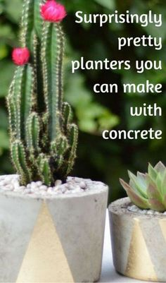 A 'Concrete' Guide to Making Planters That Will Last for Years - Are you ready to tackle your summer DIY gardening projects? One of our favorites is making your Diy Garden Projects, Outdoor Projects, Large Concrete Planters, Self Watering Planter, Diy Plant Stand, Summer Diy, Yard Art, Flower Pots, Outdoor Gardens