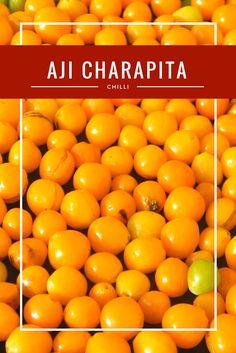Capsicum Chinense cv. Aji Charapita