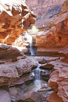 Canyonlands -- Cataract Canyon Rafting and Waterfalls Places To Travel, Places To See, Colorado River Rafting, Columbia, Picture Places, Canyonlands National Park, Whitewater Rafting, Beautiful Waterfalls, Beautiful Places