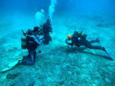 Ayvalık dalış okulu - ida dalış merkezi #scuba #scubadiving #diving #underwater #dalisnoktam #ayvalikdalis #daliskursu #dalismerkezi #dalisokulu #denemedalışı www.idadiving.com