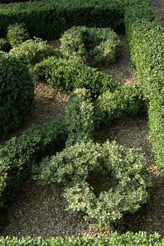 Knot garden topiary at Raworth Gardens, UK