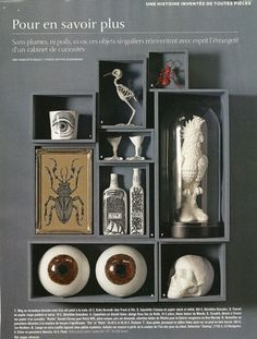 Halloween Cabinet of curiosities Vanitas, Collage Kunst, Cabinet Of Curiosities, The Bell Jar, Bell Jars, 3d Studio, Displaying Collections, Weird And Wonderful, Box Art
