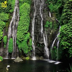 Woow ini 10 Photo yang menunjukkan Air Terjun Banyumala Bali Wajib Travelers Kunjungi
