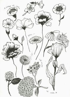 - Blumenumrisse – Flower Tattoo Designs – - Peony Flower Art PRINT of Pen Illustration Flower Drawing Flower Tattoo Designs, Flower Tattoos, Flower Outline Tattoo, Tattoo Outline Drawing, Flower Designs, Art Floral, Illustration Botanique, Illustration Flower, Muster Tattoos