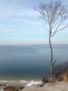 Wildwood State Park comprises 600 acres of undeveloped hardwood forest, terminating on the high bluff overlooking Long Island Sound. Swimmers can take advantage of the cool waters of the Sound, and picnickers can relax at shaded picnic tables as their children enjoy the nearby playground.