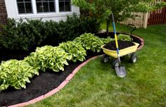 Easy Backyard Landscaping Ideas Home