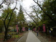 """Castello Ueda"", Ueda Nagano Japan (Ottobre)"