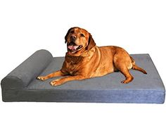 Dogbed4less Extra Large HeadRest Orthopedic Memory Foam Pet Dog Bed for Large Dog Waterproof Liner and Gray Microsuede Cover XXL ** Check this awesome product by going to the link at the image. This is an Amazon Affiliate links.