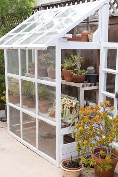 A makeshift greenhouse houses a succulent garden. Porch Greenhouse, Small Greenhouse, Greenhouse Gardening, Potager Garden, Greenhouse Wedding, Bonsai, What Is A Conservatory, Back Garden Design, Backyard Ideas For Small Yards
