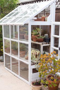 A makeshift greenhouse houses a succulent garden. Porch Greenhouse, Small Greenhouse, Greenhouse Gardening, Potager Garden, Greenhouse Wedding, Bonsai, Back Garden Design, Backyard Ideas For Small Yards, San Diego Houses