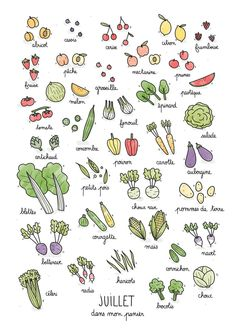 Fruits & Vegetables calendar on Behance Bullet Journal Art, Bullet Journal Inspiration, Doodle Drawings, Doodle Art, Easy Drawings, Fruit Doodle, Food Doodles, Garden Journal, Sketch Notes