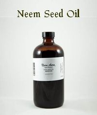 Learn more about using neem as an insecticide and the many ingenious ways in which neem oil kills insects. make your own garden insecticide unwanted bugs and pests naturally Bronners Soap, Milk The Cow, Edible Plants, Potted Plants, Natural Mosquito Repellant, Natural Pesticides, Japanese Beetles, Thing 1, Neem Oil