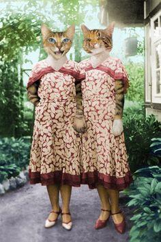 Stanley and Peepers Blog: Vintage Series
