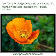 Formal gardens or wild nature? What's your preference?