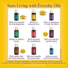 Young Living Essential Oils Biz | The business of Young Living ...
