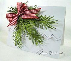 KC Impression Obsession Pine Branch 4 right/Kittie Caracciolo  12/6/12