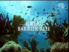 Australia's Great Wonder - The Great Barrier Reef - YouTube