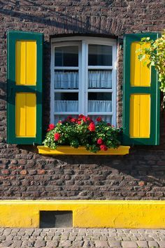 Colores fuertes  Zons, Germany