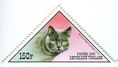 Postage stamp - Togo, 1999 (Pedigree cats: British Shorthair)