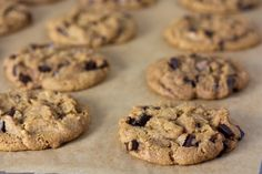 These Chewy Vegan Chocolate Chip Cookies are no nonsense soft, chewy chocolate chip cookies like your vegan grandma used to make. Also great for ice cream sandwiches! Vegan Chocolate Chip Cookie Recipe, Butter Chocolate Chip Cookies, Chocolate Chips, Maple Cookies, Coconut Chocolate, Vegan Brownie, Organic Chocolate, Raisin Cookies, White Chocolate