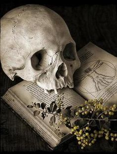 """""""Between hell now, and hell later, Sassenach,"""" he said, his speech measured and precise, """"I will take later, every time.""""  ― Dragonfly in Amber  by D.Gabaldon [Credit - Still life with skull]"""