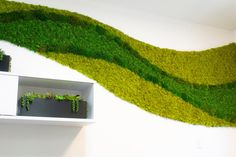 Gallery - Bring Nature Indoors Moss Wall, Unique Wall Art, Wall Design, Design Projects, Custom Design, Art Pieces, Bring It On, Indoor, Gallery