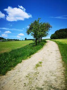 Wunderschöne Wanderwege in Bad Leonfelden! Freue mich schon auf die nächste Tour :-) Bad, Country Roads, Hiking Trails, Communities Unit, Tourism, Road Trip Destinations, Tours