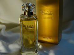 Emotional Treasurer: Caleche Hermes