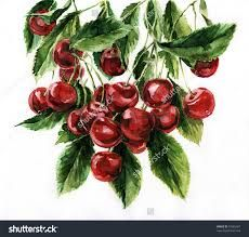 Image result for background in a still life painting