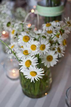 Hydrangea Table Daisy Close-up: Setting Design.