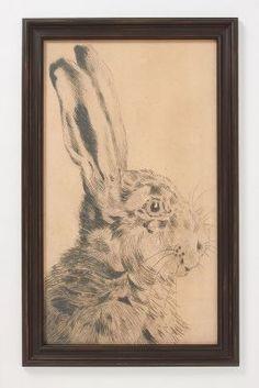 Rabbit Profile Framed Art