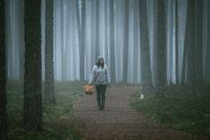 Rokua National Park — Eeva Mäkinen