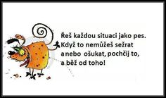 a nebo tak :-) Humor, Clever, Sayings, Memes, Funny, Quotes, Challenges, Anime, Design