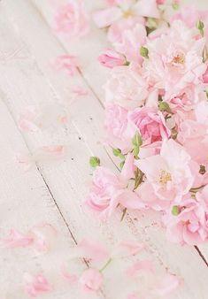 """Kiyumie: """" by nelly kireva """" cherry blossom wallpaper iphone, pastel iphone wallpaper, Trendy Wallpaper, Wallpaper Iphone Cute, Flower Wallpaper, Cute Wallpapers, Iphone Pics, Floral Wallpapers, Cellphone Wallpaper, Iphone Wallpapers, Flower Backgrounds"""