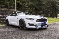 My 2016 Shelby GT350