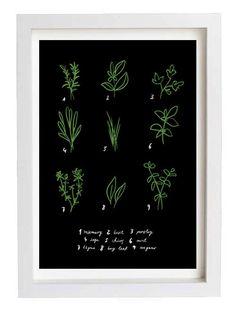 """Kitchen Art Print Herbs 11""""x15 Botanical Chart - archival fine art giclée print"""
