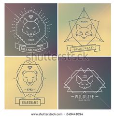 Trendy Retro Vintage Insignias Bundle. Animals. Wolf, koala, fox. Vector set of outline emblems and badges - abstract hipster logo templates - stock vector