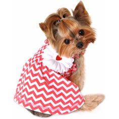 Simply Dog Coral Chevron Smocked Dress