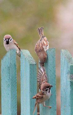 He joh...omhoog moet je..niet naar benee!! ♡♡♡