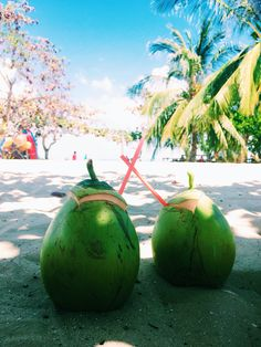 Island hoping was nice. Especially the fresh coconuts.