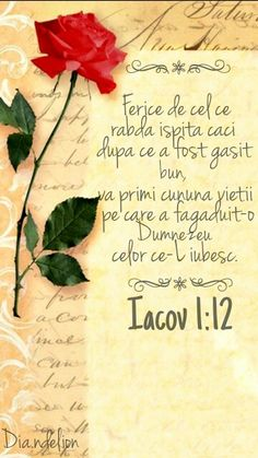 . Biblical Verses, Bible Verses, Bless The Lord, Jesus Loves You, Faith In Love, God Jesus, Christian Quotes, Beautiful Words, Romania