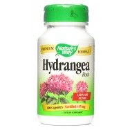 Hydrangea Root - naturally dissolves ganglion cyst??