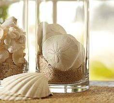 sand dollars.... I do a version of this for flowers I have received, so I guess I will expand my collection.