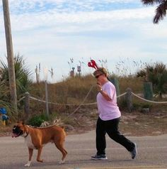 Many of Edisto's canine residents joined in!