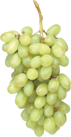 This high quality free PNG image without any background is about grape, berry, grapes, fruit and green grapes. Green Grapes, Berries, Fruit, Green Grape, Bury, Blackberry, Strawberries