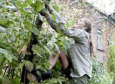 """De jeugd mag niet meer bewegen, zo is te horen bij de jeugdbeweging. """"Zelfs in een boom klimmen is tegenwoordig verboden."""""""
